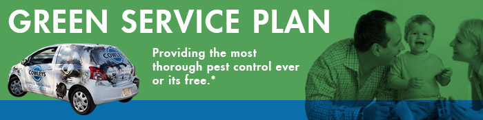 green-service-plan-header2