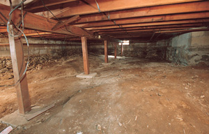 a wet, moldy crawl space in Farmington, NM