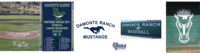 Damonte Ranch High School Baseball